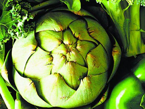 8° Congreso Internacional de Nutrición y Fisiología Vegetal Aplicadas Online